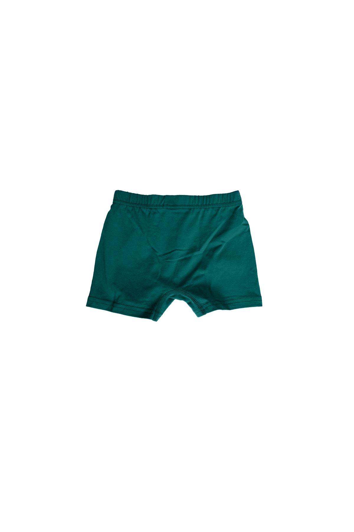Yeşil Erkek Çocuk Pamuklu Boxer 209