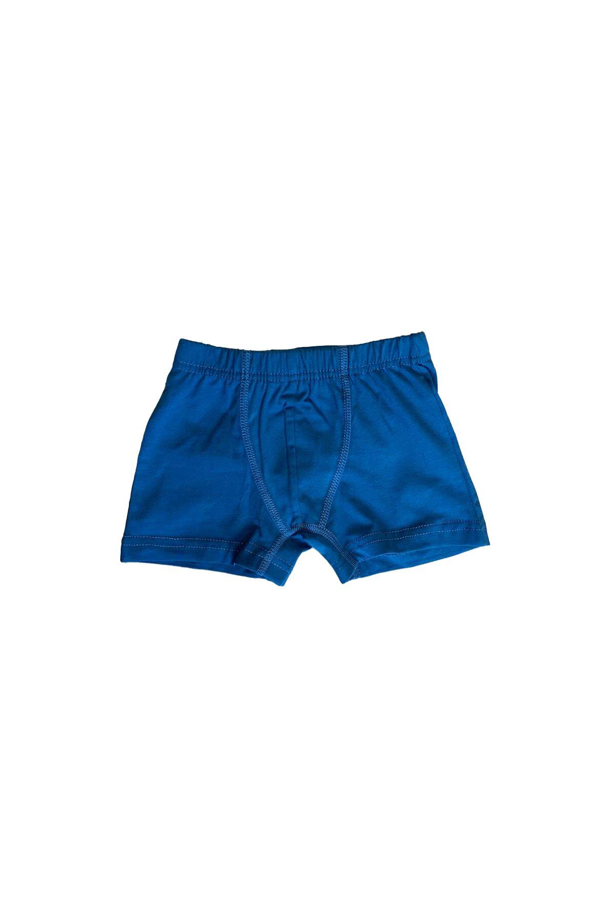 Mavi Erkek Çocuk Pamuklu Boxer 209