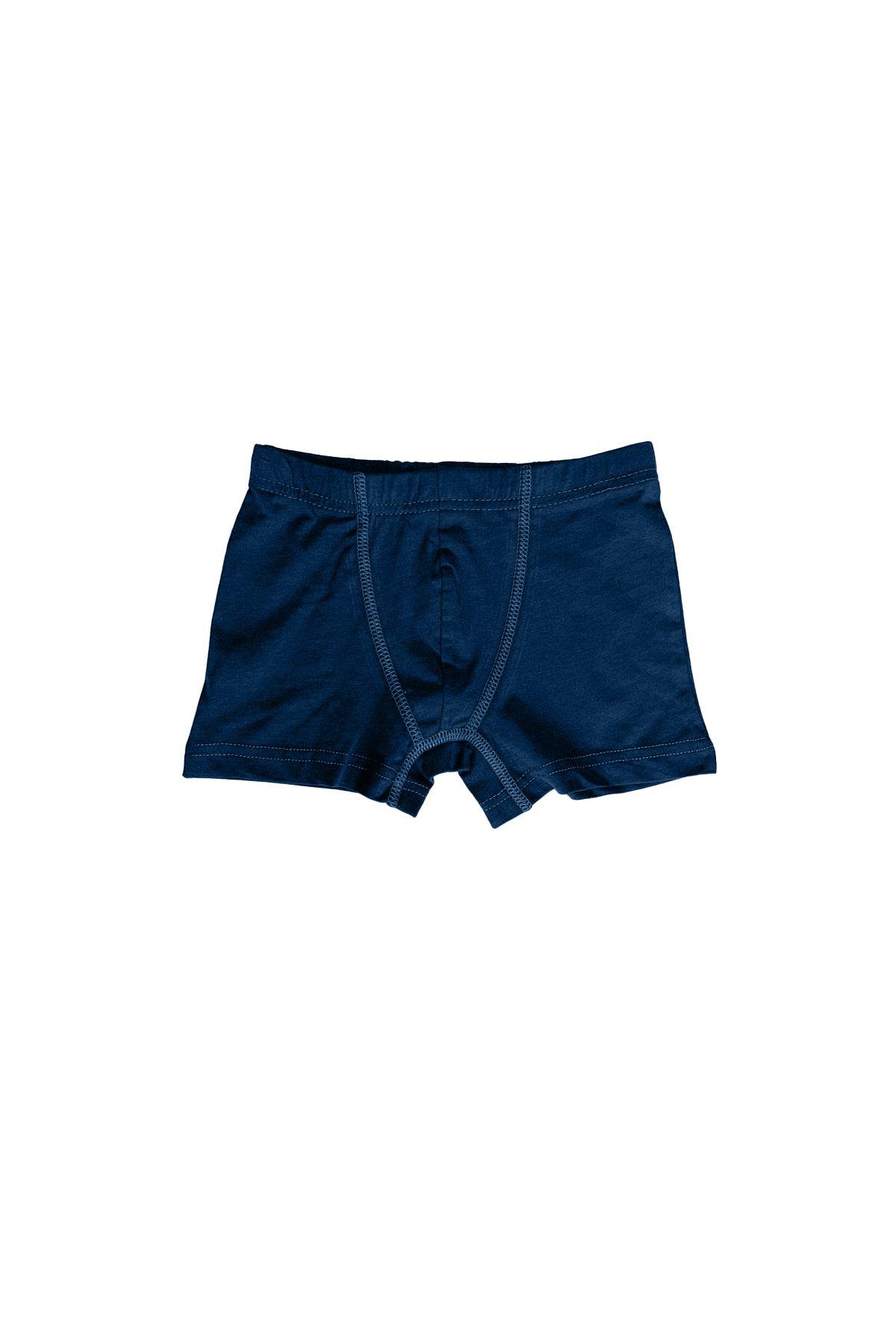 Füme Erkek Çocuk Pamuklu Boxer 209